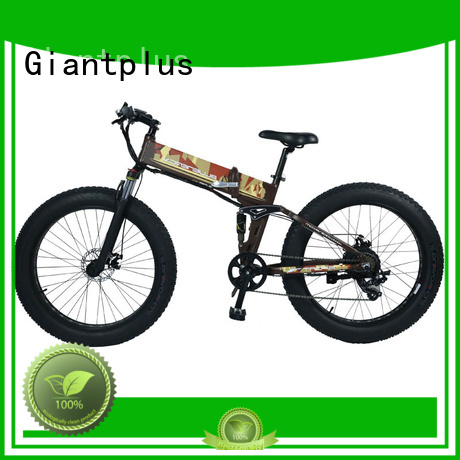 terrain foldable wheels OEM wholesale e bikes Giantplus