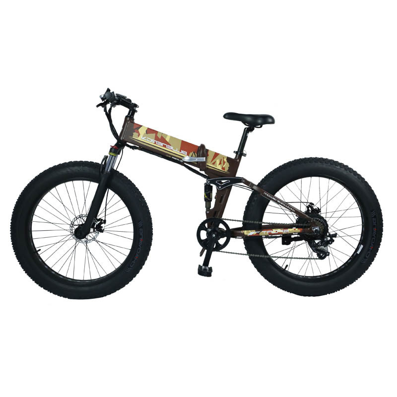 Lithium battery power BM5 the all terrain electric bike