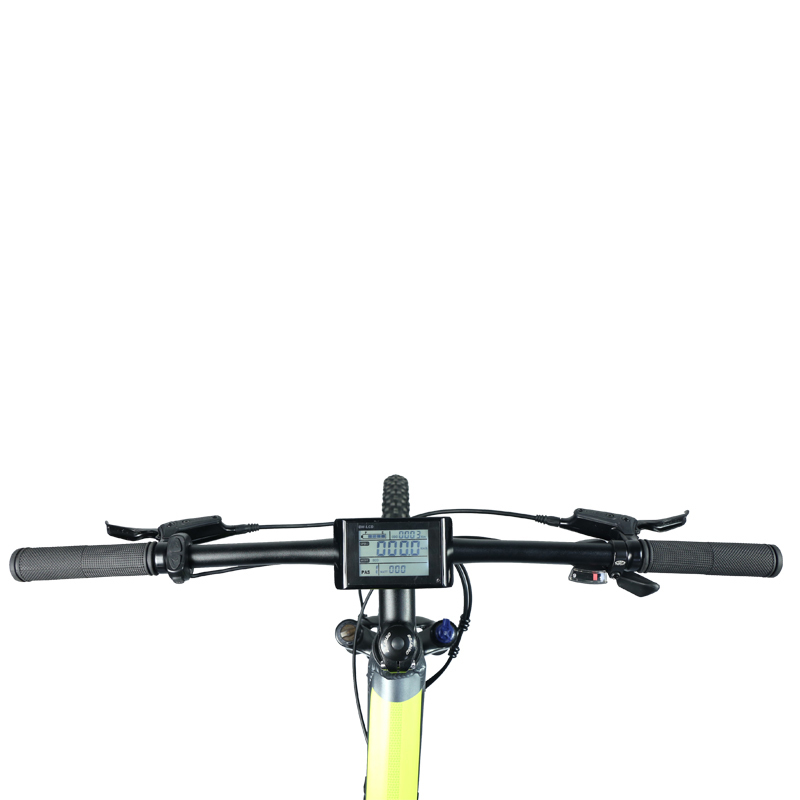 Wholesale city electric bike distributors snow Giantplus Brand