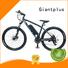 red magnesium wholesale e bikes terrain Giantplus Brand company
