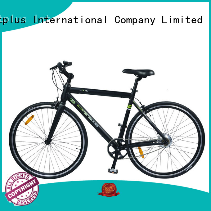 Custom adults wholesale e bikes ebike Giantplus