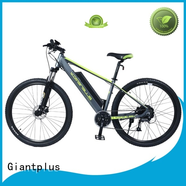 swappable battery two adults wholesale e bikes Giantplus