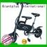 bicycle black Giantplus Brand electric bike distributors factory