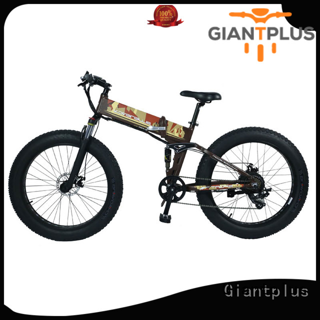 Hot electric bike distributors mini Giantplus Brand