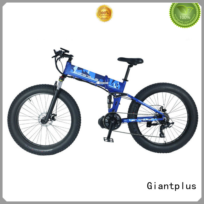 ebike electric Giantplus Brand wholesale e bikes
