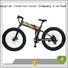 electric bike distributors fashion mid Giantplus Brand wholesale e bikes