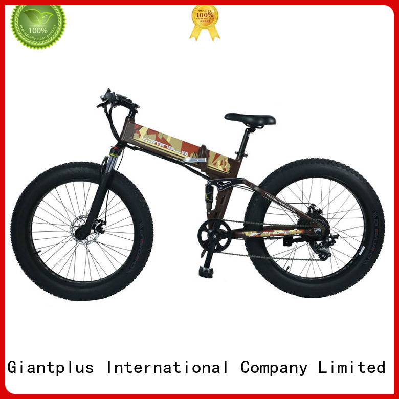 Giantplus Brand ebike latest adults electric bike distributors magnesium