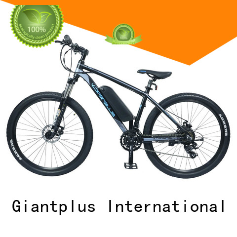 Custom bike wholesale e bikes adults Giantplus